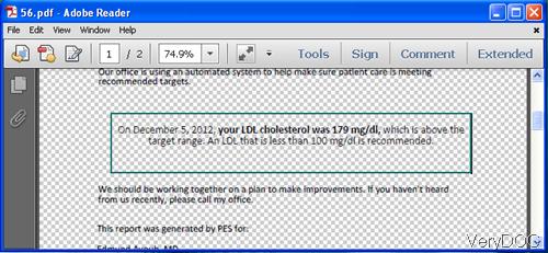 rtf to PDF correctly